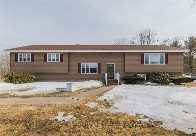 Johnstown Single Family Home For Sale: 242 E State Street Ext.