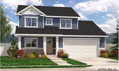 Halfmoon Single Family Home For Sale: 29b Vosburgh Rd