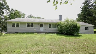 Rensselaer Single Family Home For Sale: 241 County Route 357
