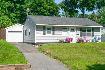 East Greenbush Single Family Home For Sale: 225 Park Av