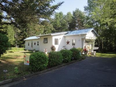 Schroon Single Family Home Active-Under Contract: 59 Cedar Hill Dr