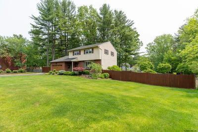 Schenectady Single Family Home For Sale: 946 E Pine Hill Dr