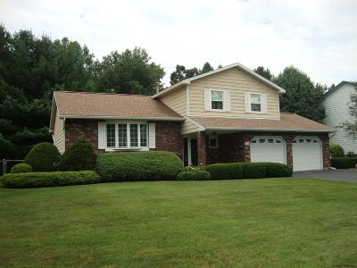 Guilderland Single Family Home Active-Under Contract: 5133 Foxwood Dr