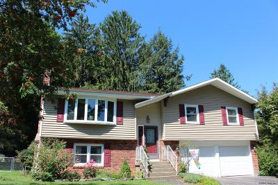 Glenville Single Family Home For Sale: 12 Robinson Rd