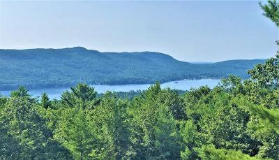Lake George Single Family Home For Sale: 71 Wonderview La (Pvt)