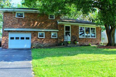 Colonie Single Family Home For Sale: 28 Wertman La
