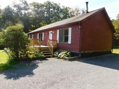 Duanesburg Single Family Home For Sale: 1670 Burtonville Rd