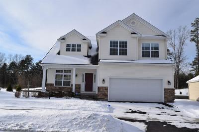 Saratoga Springs Single Family Home For Sale: 17 Pamela La