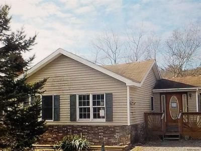 Greene County Single Family Home For Sale: 55 County Rt 26