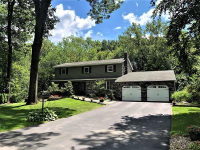 Clifton Park Single Family Home For Sale: 32 El Lobo Ct
