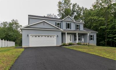 Mechanicville, Stillwater Single Family Home For Sale: 29 Morgan Ct