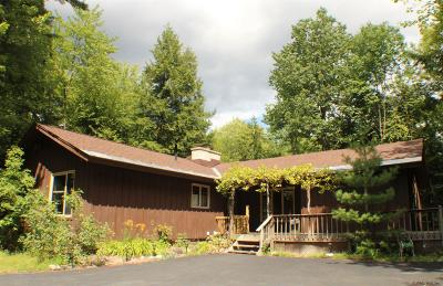 Lake George Single Family Home Active-Under Contract: 268 Flat Rock Rd