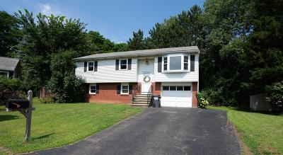 East Greenbush Single Family Home Active-Under Contract: 9 Faith La