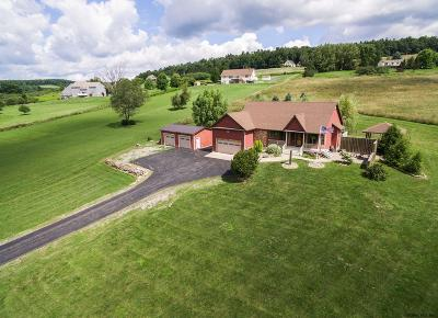 Schoharie County Single Family Home For Sale: 135 Valleyview Dr