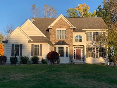 Halfmoon Single Family Home For Sale: 48 Outlook Dr South