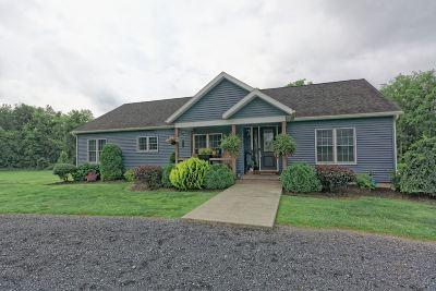 Albany County, Saratoga County, Schenectady County, Warren County, Washington County Single Family Home For Sale: 234 Jericho Rd