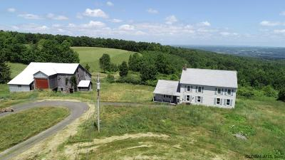Schoharie County Single Family Home For Sale: 204 Lawton Hollow Rd
