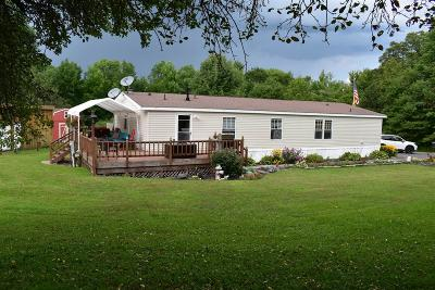 Schoharie County Single Family Home For Sale: 171 Rossman Hill Rd