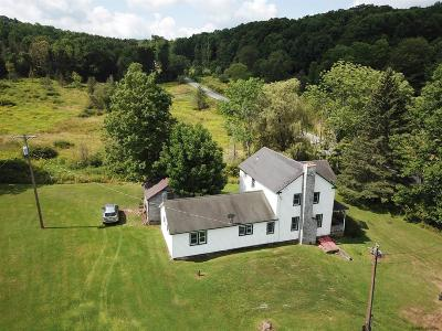 Schoharie County Single Family Home For Sale: 364 Westkill Rd