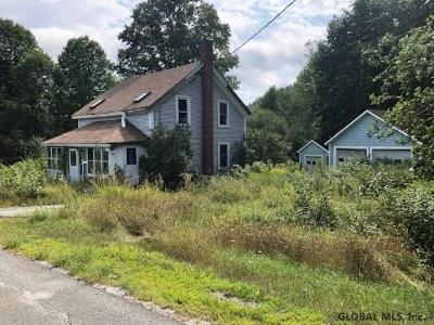 Essex County Single Family Home New: 524 Silver Hill Rd
