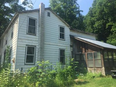 Montgomery County Single Family Home For Sale: 51 East Grand St