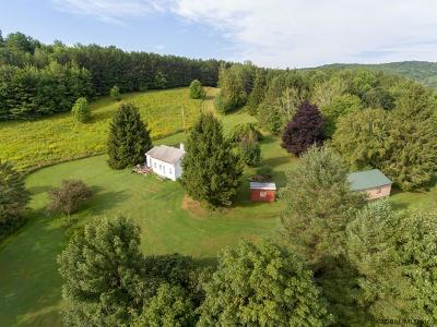 Schoharie County Single Family Home For Sale: 207 Franzen Rd