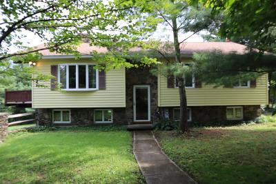 New Scotland Single Family Home New: 254 Stove Pipe Rd