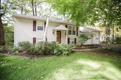 Wilton Single Family Home For Sale: 138 Ingersoll Rd