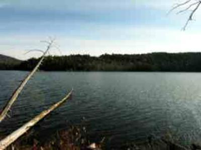 Essex County Residential Lots & Land For Sale: O Nielson Rd