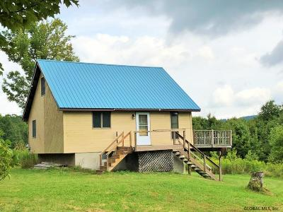 Schoharie County Single Family Home New: 121 Blakesley Rd