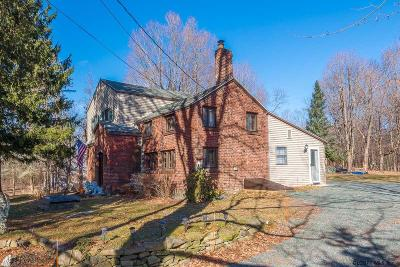 East Greenbush Single Family Home For Sale: 454 Luther Rd