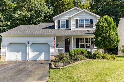 Rensselaer County Single Family Home Active-Under Contract: 9 Wynantskill Way