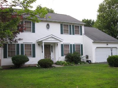 Rensselaer County Single Family Home For Sale: 17 Red Rock Rd