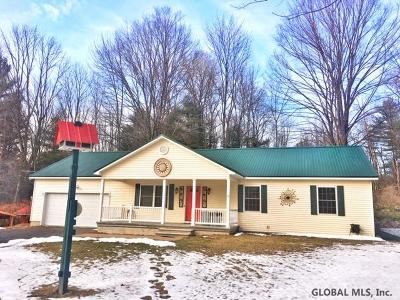 Lake George Single Family Home For Sale: 799 State Route 149