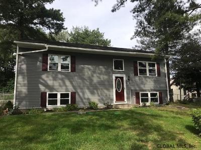 Albany Single Family Home For Sale: 1 West Meadow Dr