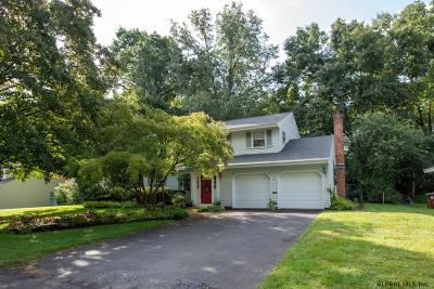 Albany County Single Family Home For Sale: 37 Linda Ct