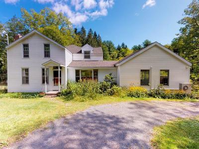 Guilderland Single Family Home For Sale: 6236 Foundry Rd