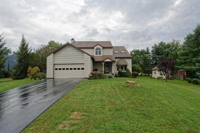 Albany County Single Family Home For Sale: 9 Armstrong Dr