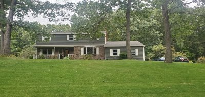 Clifton Park Single Family Home New: 54 Blue Spruce La