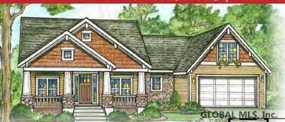 Saratoga County Single Family Home New: 220 Kadnorida Dr