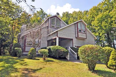 Rensselaer County Single Family Home New: 9 Ternan Av