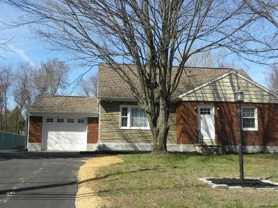 Fulton County, Hamilton County, Montgomery County, Saratoga County, Warren County Single Family Home New: 425 Rt 146