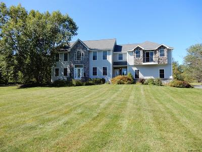 Rensselaer County Single Family Home New: 19 Grandview Dr