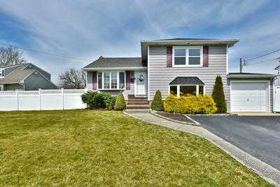 Massapequa Park Single Family Home For Sale: 352 Rose Street