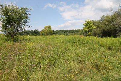Lots and Land Price Reduced: Upper Footes Hill Rd.
