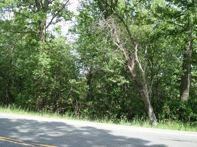 Dundee Residential Lots & Land For Sale: State Route 226