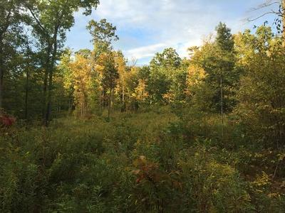 Montour Falls Residential Lots & Land For Sale: 4409 Drew Rd