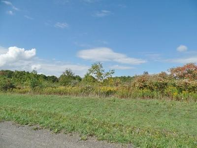 Schuyler County Residential Lots & Land For Sale: Parcel C Tichenor Road