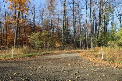 Lots and Land For Sale: Spencer