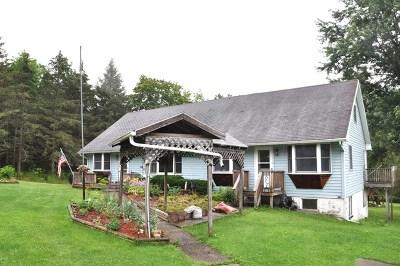 Van Etten Single Family Home For Sale: 580 McDuffy Hollow Rd